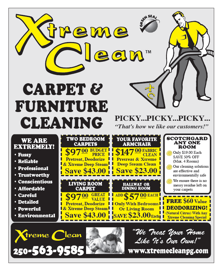 Carpet And Furniture Cleaners Ideas